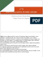 listadeexercciosrespondida-cidosnuclicosnucleoedivisocelular-cpia-140918114437-phpapp01.pdf