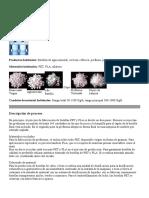 330881763-Preforsa-Oruro.pdf