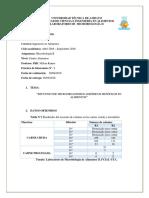 IMICRO-II.-informe-n2..docx