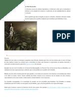 Los 35 Mitos y Leyendas de Colombia Más Destacados
