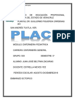 place embarazo.docx