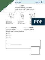 Examen 1° G.docx