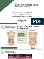 Anatomia de La Pared Abdominal, Pelvis y Arf -Ginecologia . 1 Tema.
