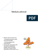 medula adrenal