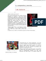 MATERIA Y ELEMENTOS.pdf