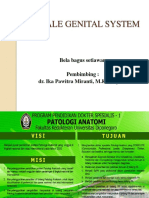 Female genital system fix.pptx