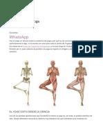 Anatomía del yoga ARTÍCULO.docx