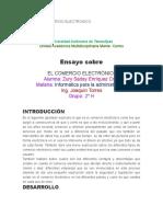ENSAYO DE COMERCIO ELECTRONICO.docx