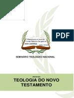 Apostila Teologia I.pdf