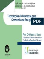 Tecnologias da Biomassa para conversão da Energia