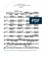 Smetana-MaVlast2.Flute-pages-3,5-6,9-11.pdf