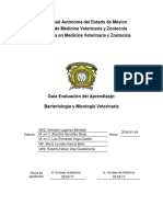 102_ARCH0_GE BACTERIOLIGÍA Y MICOLOGÍA VETERINARIA.pdf