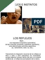 CLASE 6 - Reflejos e Instintos.ppt