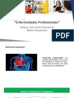 Enfermedades Profesionales.pdf