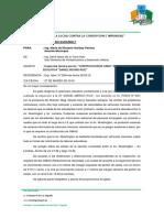 INFORME DE INSPECCION I.E D.M.R.docx