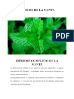Informe de La Menta