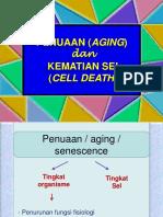 Penuaan Dan Kematian Sel