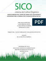 SICO - Formulación y Evaluación de proyectos.docx
