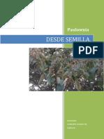 DESDE SEMILLA . (JUSTIFICACION,GERMINACION REPICADO Y SELECCION DE SEMILLA HIBRIDA.).docx