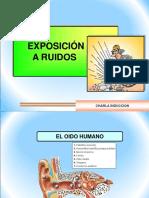 18._RUIDOS