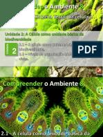 celula_unidade_biodiversidade1.pptx