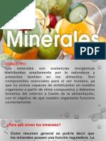 MINERALES-NUTRICIÓN