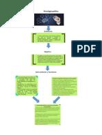 Psicología política mapa.docx
