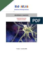 Biologia - Neurônios Sinapses Demo