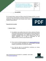 Acta comite GAGAS Agosto.docx