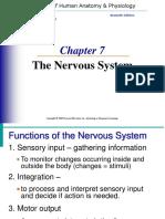Nervous_System.ppt