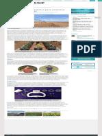 Projetos Mostram Caminhos Para Aumentar Eficiência Da Irrigação