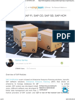 Overview of Sap Modules