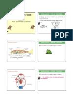 Biologia - Pré-Vestibular Dom Bosco - Aula de Véspera - Inv