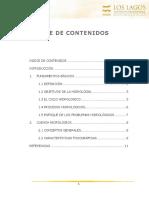 01_Hidrología.docx