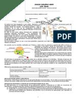 Guía Biología noveno ADN.docx