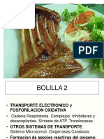 C. RESPIRATORIACs.Biol-2010.ppt