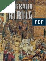 Sagrada Biblia (Agustín Magaña).pdf