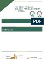 Anatomía de los maxilares 1.pptx