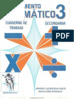 complemento matematicas 3°.pdf