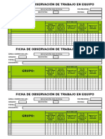 Ficha de Observación - Trabajo en Equipo - Individual 2
