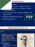 crainal nerve-2015-ruan-2.ppt