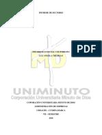INFORME DE SECTORES.docx