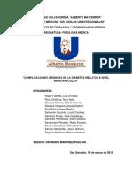 TRABAJO-DE-SEMINARIO-FISIOLOGIA-II.docx