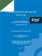 Páginas desdeReporte Cump Amb, Social, SSO_1er_SEM_2012.pdf