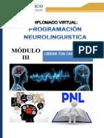 Pnl y Aprendizaje