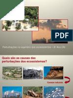 pertubnosecossistemas-8cap1011