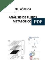 Clase Fluxómica
