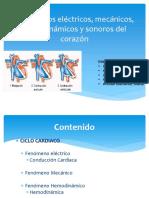 220649308-Exposicion-Fenomenos-Electricos-Mecanicos-Sonoros-Del-Corazon.ppt