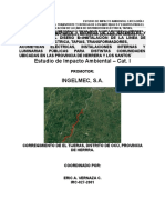 EIA (1).docx