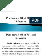 17053_subcutan(1)